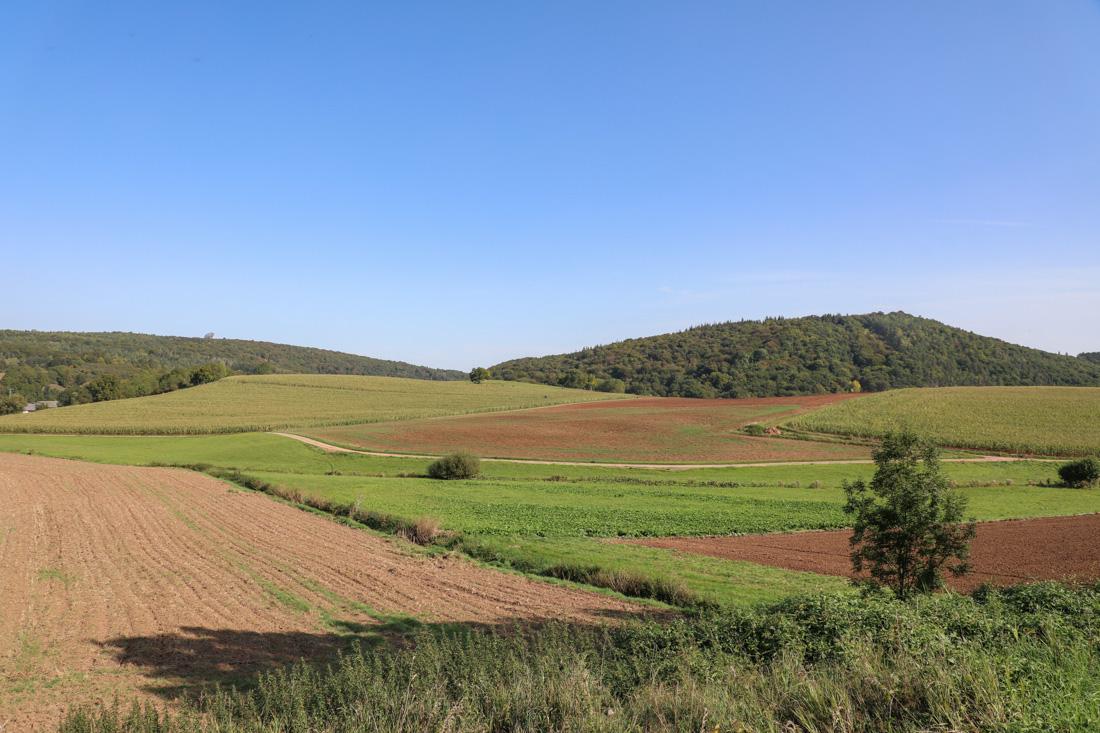 Eifel landschap